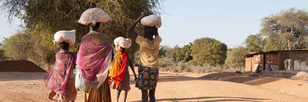 Design of Global Humanitarian Growth Plan